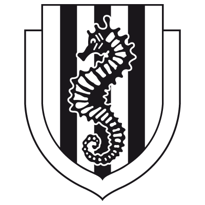 AC-Cesena@2.-other-logo.png