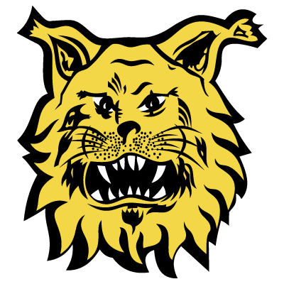 Ilves-Tampere.png
